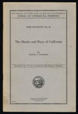 Image for The sharks and rays of California