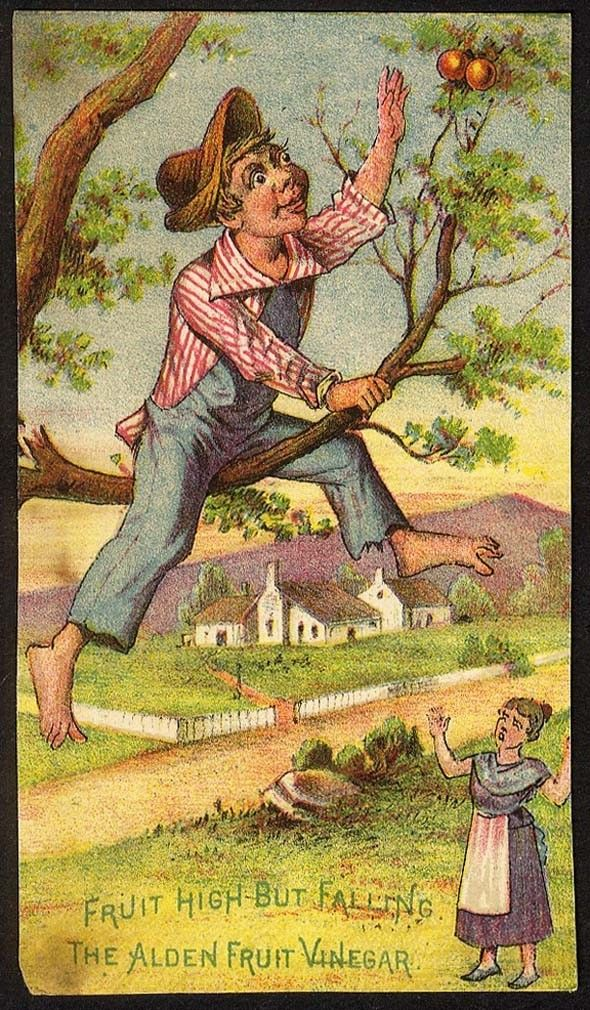 Image for Alden Fruit Vinegar - Victorian Trade Card